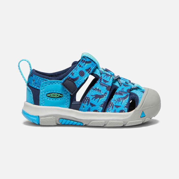 Toddlers' Newport H2 in Vivid Blue/Katydid - large view.