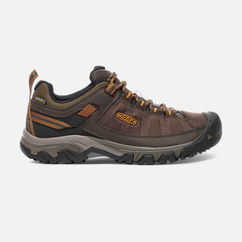 Men's Targhee Exp Waterproof Hiking Shoes in Cascade/Inca Gold - large view.