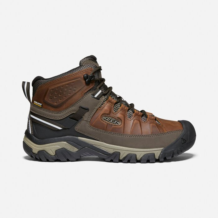 Men's Targhee III Waterproof Mid in Chestnut/Mulch - large view.