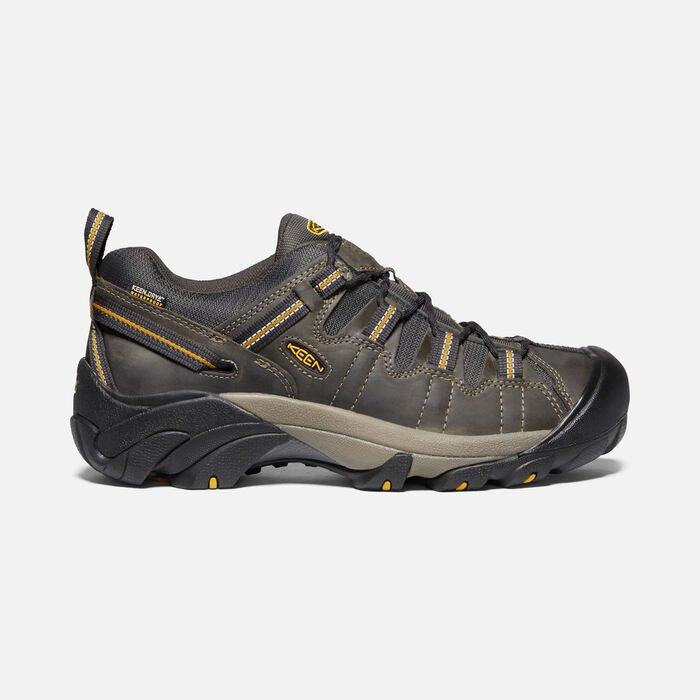 Men's Targhee II Waterproof in Raven/Tawny Olive - large view.