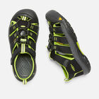 OLDER KIDS' NEWPORT H2 SANDALS in BLACK/LIME GREEN - small view.