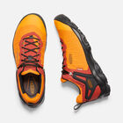 MEN'S VENTURE WATERPROOF HIKING SHOES in DARK CHEDDAR/RAVEN - small view.